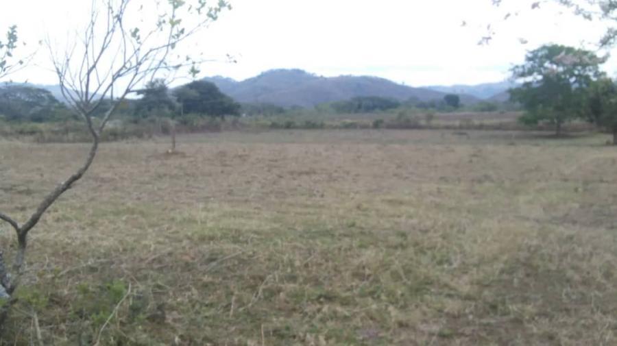 Foto Finca en Venta en NIRGUA, Nirgua, Yaracuy - U$D 350.000 - FIV130944 - BienesOnLine