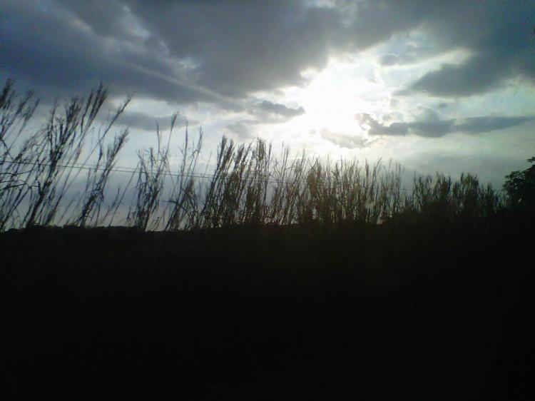 Foto Finca en Alquiler en El Pao via principal tinaco - baul.  BsF  1500 FIA37482