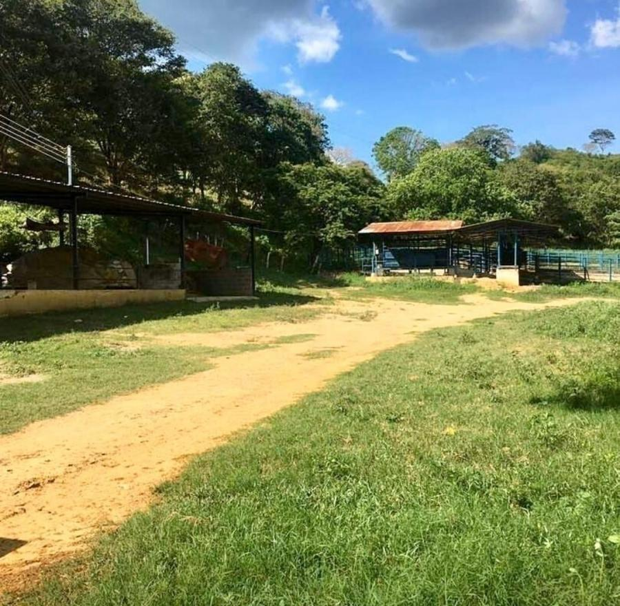 Foto Finca en Venta en NIRGUA, Nirgua, Yaracuy - 784 hectareas - U$D 450.000 - FIV143439 - BienesOnLine