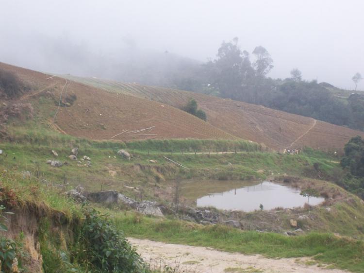 Foto Finca en Venta en Angaraveca, Michelena, T�chira - 21 hectareas - BsF 1.500.000 - FIV21415 - BienesOnLine