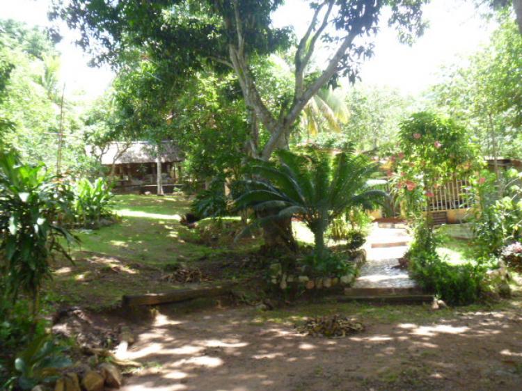 Foto Finca en Venta en Ciudad Guayana, Bol�var - 28 hectareas - BsF 250.000 - FIV28034 - BienesOnLine