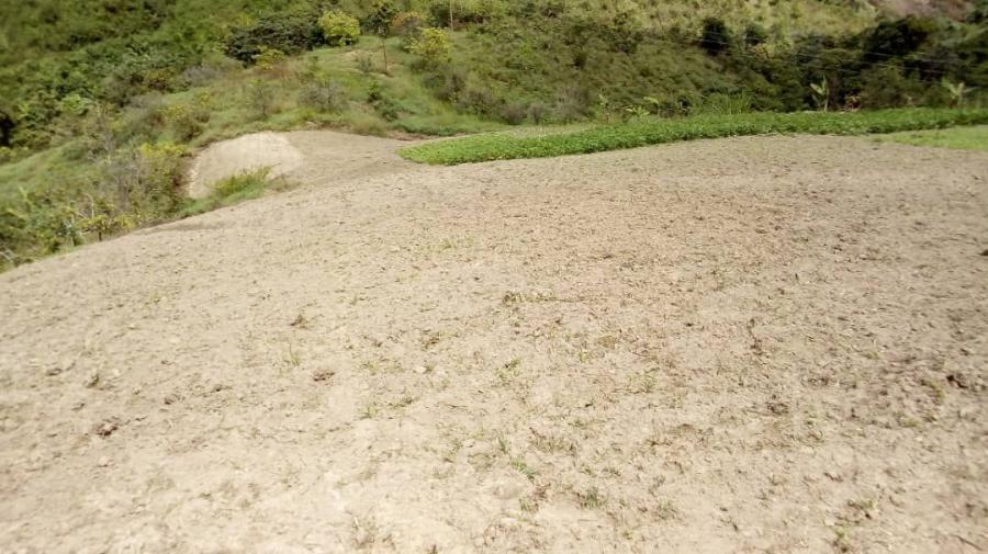 Foto Finca en Venta en Loma larga, Carayaca, Vargas - U$D 20.000 - FIV129425 - BienesOnLine