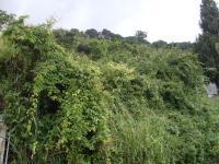 Terreno en Venta en prados del este Caracas