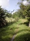 Terreno en Venta en Caucagua Caucagua