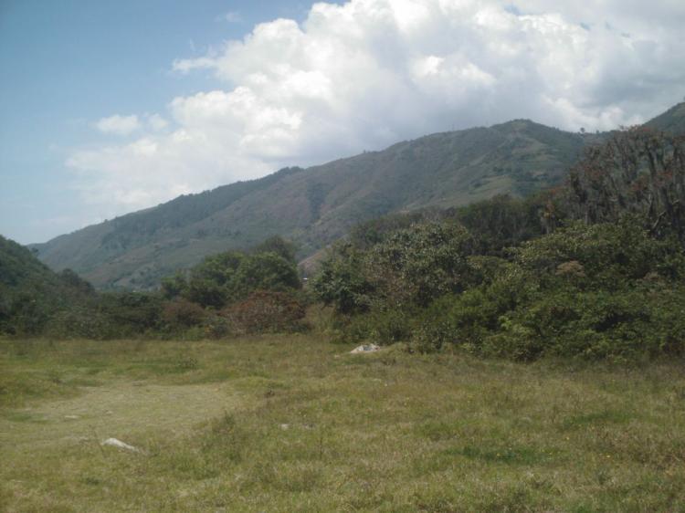 Foto Terreno en Venta en Tabay, Tabay, M�rida - BsF 160.000.000 - TEV77022 - BienesOnLine