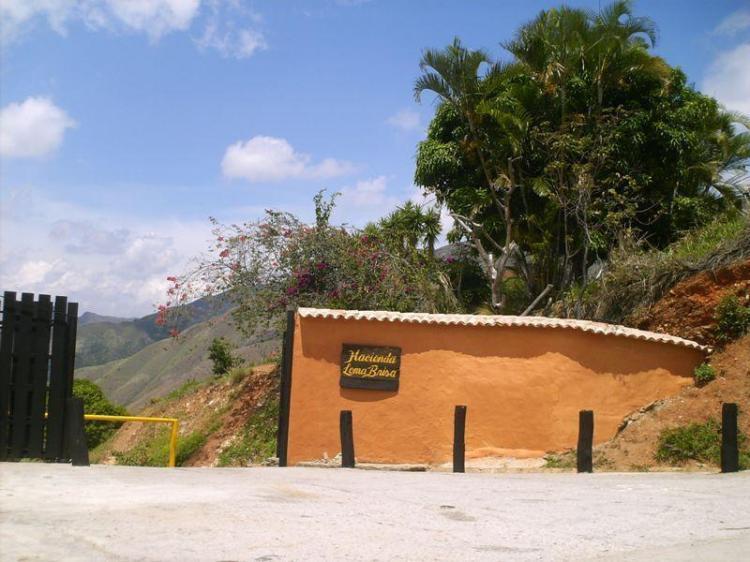 Foto Terreno en Venta en La Victoria, Aragua - BsF 25.000.000 - TEV81111 - BienesOnLine