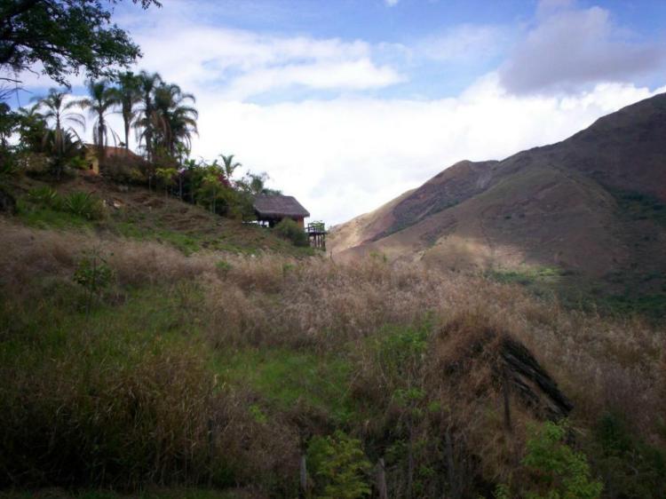Foto Terreno en Venta en La Victoria, Aragua - BsF 12.000.000 - TEV65665 - BienesOnLine