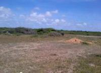Terreno en Venta en buchuaco Punto Fijo