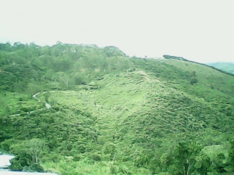 Foto Finca en Venta en Capacho Nuevo, T�chira - BsF 3.000.000 - FIV57686 - BienesOnLine