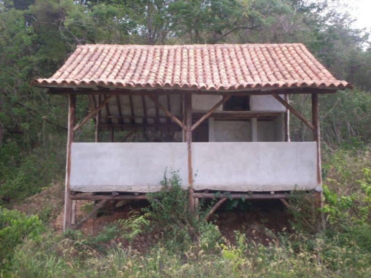 Foto Terreno en Venta en La Victoria, Aragua - BsF 17.000.000 - TEV65726 - BienesOnLine